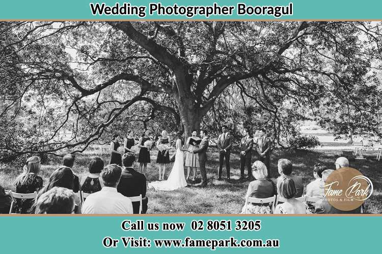 Photo of a wedding ceremony under the big tree Booragul